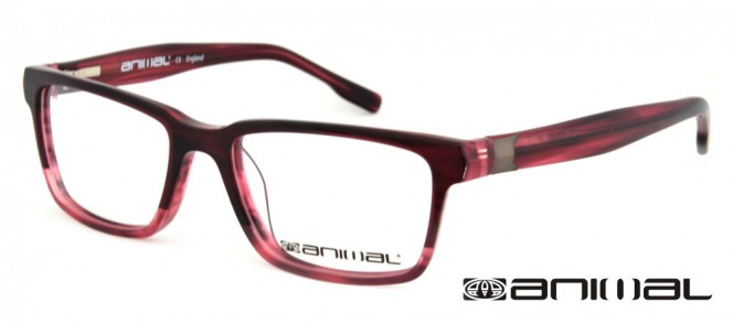 Animal ALO M07 Glasses