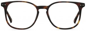 Jack & Francis FR73 - Sir O'Ryan - Raw Moonlight Tortoise Glasses