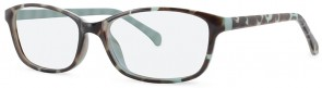 New Lenses ZP4024 C2 Glasses